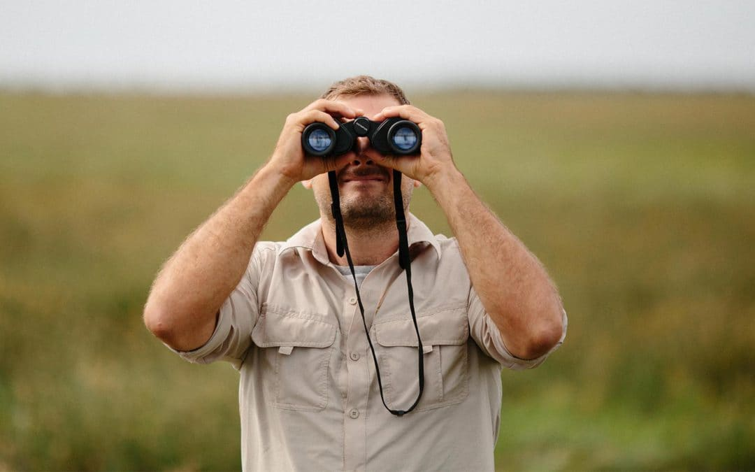 Posicionamiento en buscadores